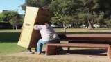 Živé krabice terorizují okolí